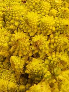 brocoli1.jpg